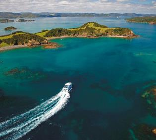 Summer in the Bay of Islands